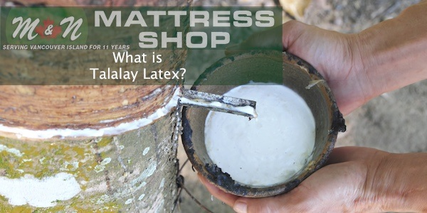 what-is-talalay-latex