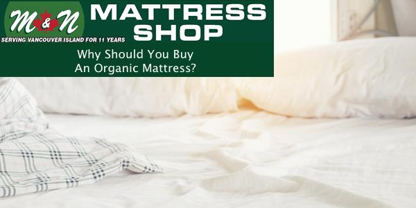 Why You Should Buy An Organic Mattress Parksville Mattress
